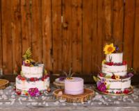 caitlin-bill-wedding-581